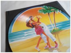 picture vinyl 1990