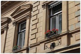 Pécs - muskátli az ablakban