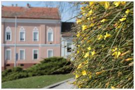 Pécs - belváros